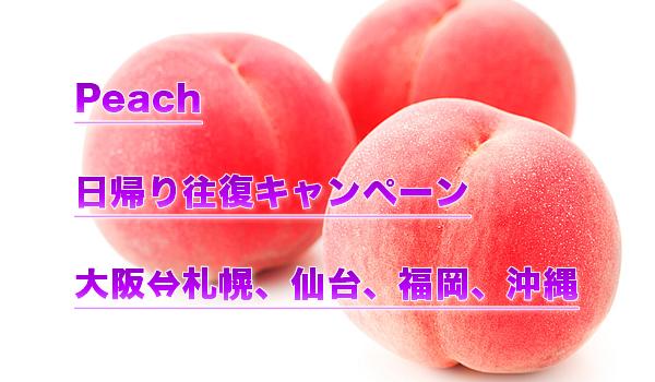 ピーチ(日帰り国内旅行キャンペーン)