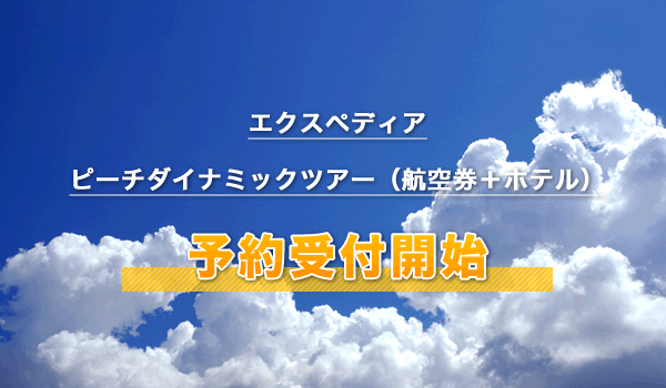 エクスペディア(ピーチダイナミックツアー)
