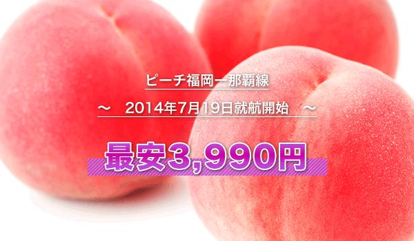 ピーチ福岡ー那覇線(2014年7月19日就航開始)
