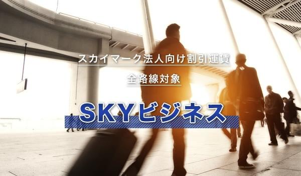スカイマーク法人向け割引運賃(SKYビジネス)